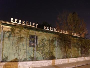 Berkeleyhort112108