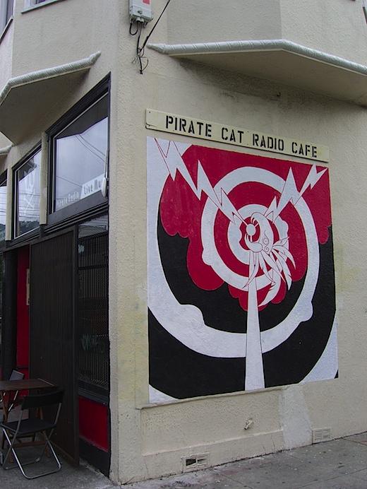 piratecat122909.jpg