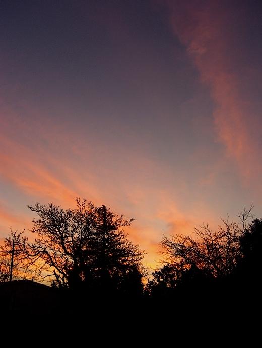 dawn010710.jpg