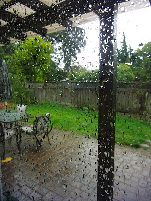 rain102410.jpg