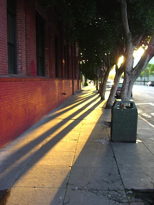 shadows040510.jpg