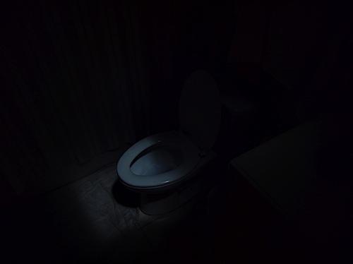 toilet012011.jpg