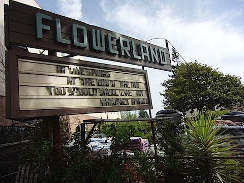flowerland050711.jpg
