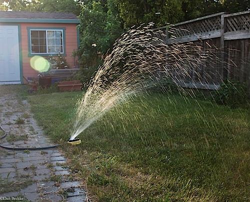 sprinkler051812-2.jpg