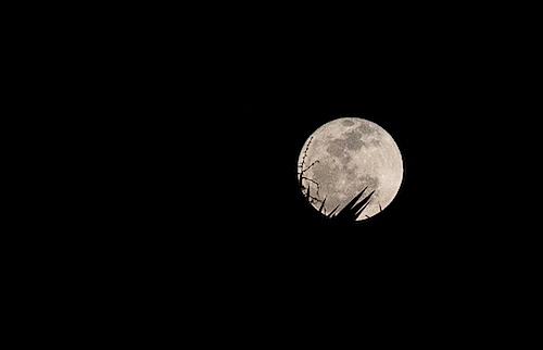 moon022513.jpg