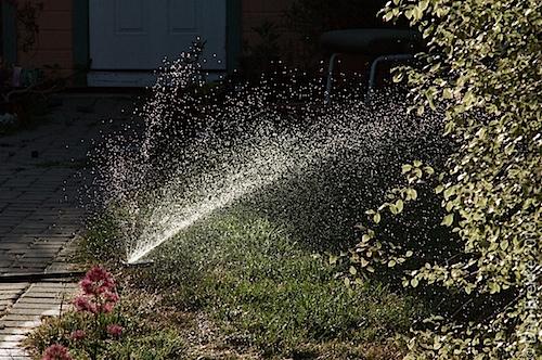water061213.jpg
