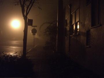 Fog122907-1