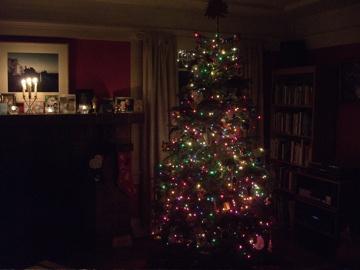 Tree122407